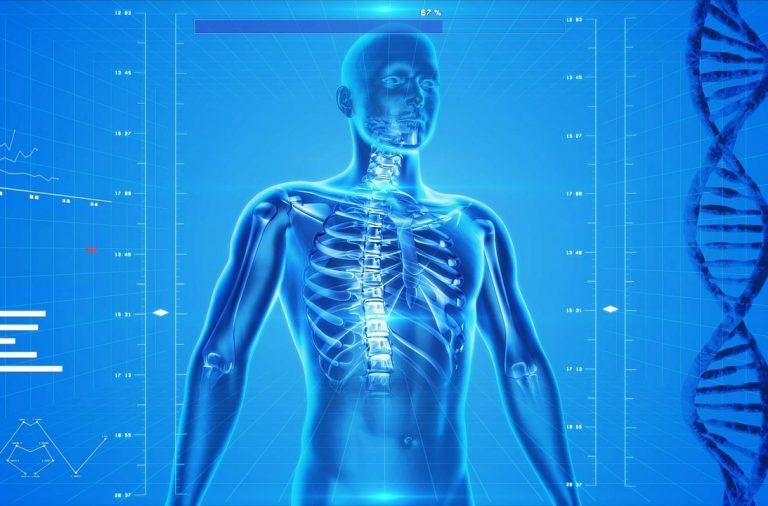 Osteoporos: complexe wisselwerking