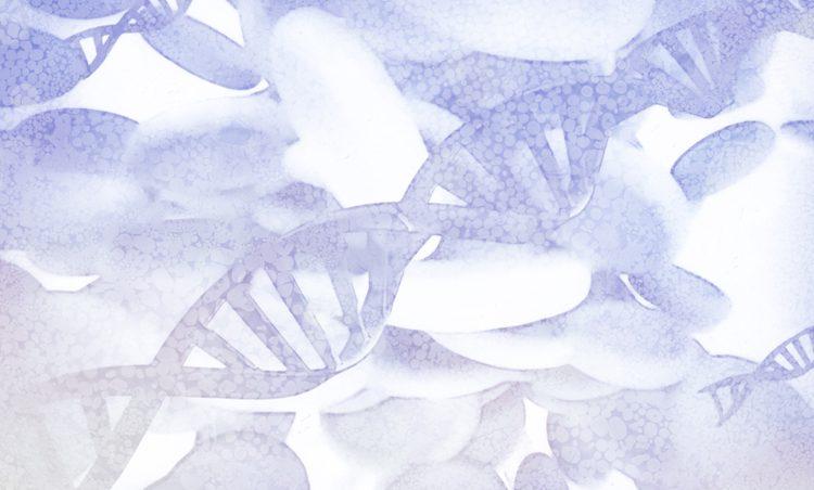 epigenetische