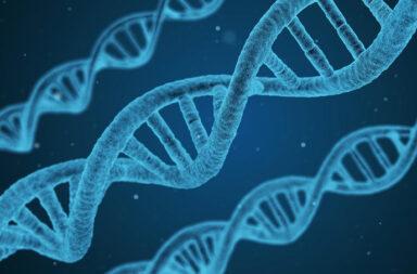 Epigenetica SARS-CoV-2